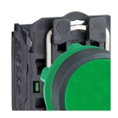 Botão de Impulsão Plástico Verde 22,5mm 1NA XB5AA31 SCHNEIDER
