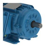 Motor Trifásico 1.5cv 1.1kW 1800rpm 60Hz 4P 380/660V W22IR2 80 B3D AZ 11394765 WEG