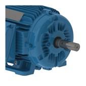 Motor Trifásico 10cv 7.5kW  1800rpm 60Hz 4P 220/380V W22IR2 132S B3D AZ 11388613 WEG