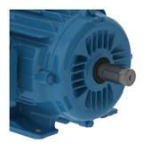 Motor Trifásico 3cv 2.2kW 1800rpm 60Hz 4P 380/660V W22IR2 90L B3D AZ 11376136 WEG